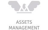 Conseils en gestion d'actifs